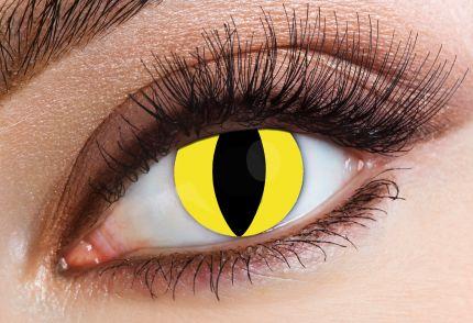 Predator 30 Days Lenses Eyecasions