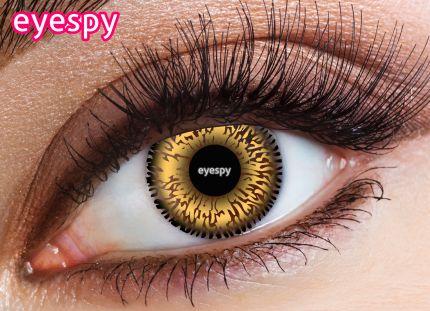 Daily Eyespy Lens-Hazel
