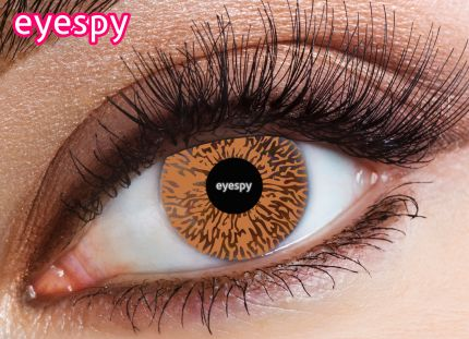1 Tone Eyespy Lens-Honey